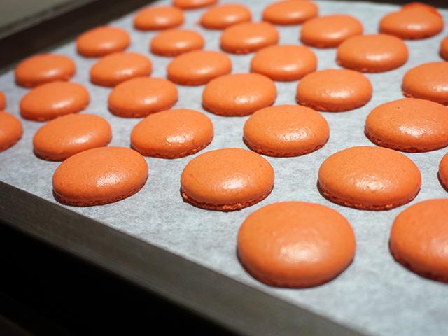 macaron shells baked
