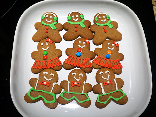 iced gingerbread men and women