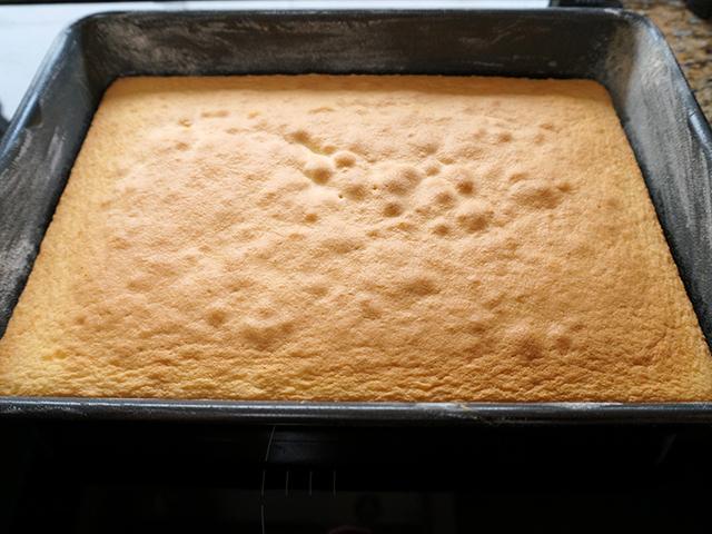 freshly baked genoese sponge